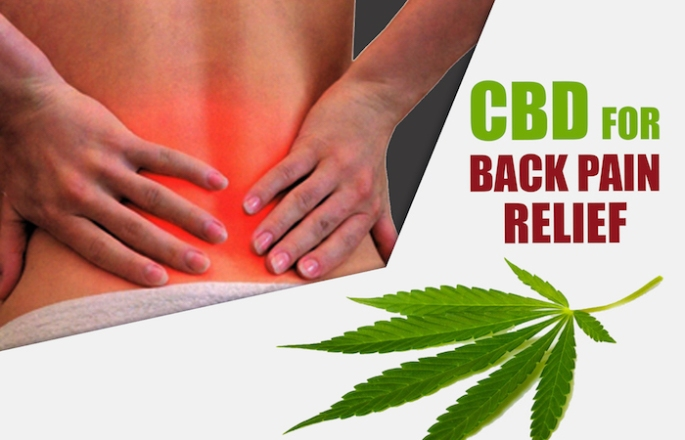 CBD OIL BACK PAIN RELIEF