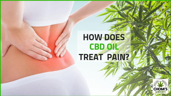 CBD OIL FOR WOMAN BACK PAIN