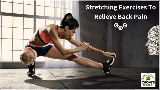 Stretching Exercises To Relieve Back Pain